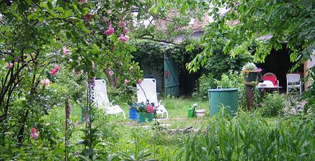 Fast Verpasst 10 Jahre Wildes Gartenblog Das Wilde Gartenblog