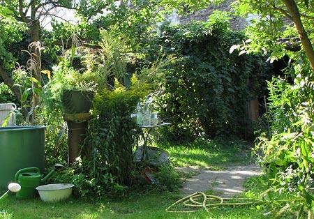 Wilder Garten im September