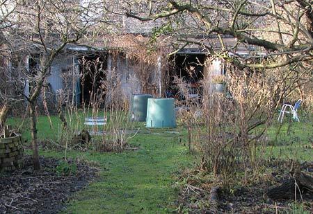 Wilder Garten im Januar