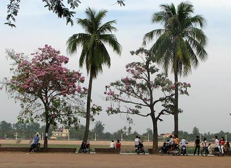 Riverside TonleSap