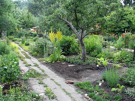 Garten in der KGA Frieden