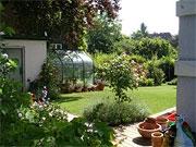 neu angelegter Garten