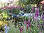 Beispiele Kreativer Gartengestaltung