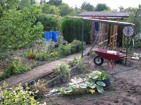 Die erste woche im neuen garten for Gartengestaltung thuja