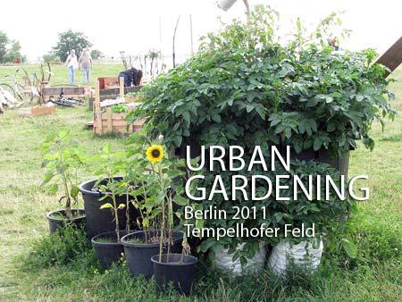 Urban Gardening Berlin Tempelhof