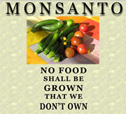 Kein Lebensmittel soll wachsen, das nicht uns gehört - MONSANTO