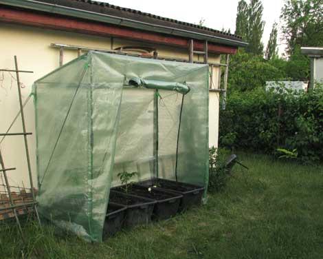 tomatenzelt selber bauen gew chshaus selber bauen bauanleitung kosten standort das haus. Black Bedroom Furniture Sets. Home Design Ideas