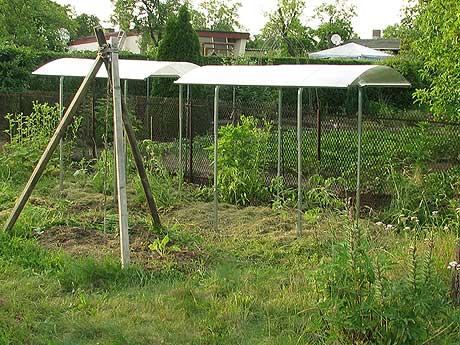 die neuen Tomatendächer