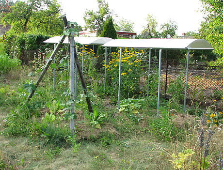 Garten Ende Juli