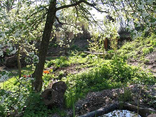 Heilende Gärten Sind Wilde Gärten. Wilder GArten