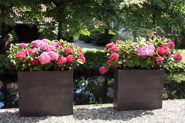sichtschutz mit pflanzk beln im garten auf balkon und. Black Bedroom Furniture Sets. Home Design Ideas