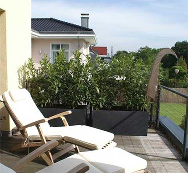 Pflanzkübel als Sichtschutz auf Balkon
