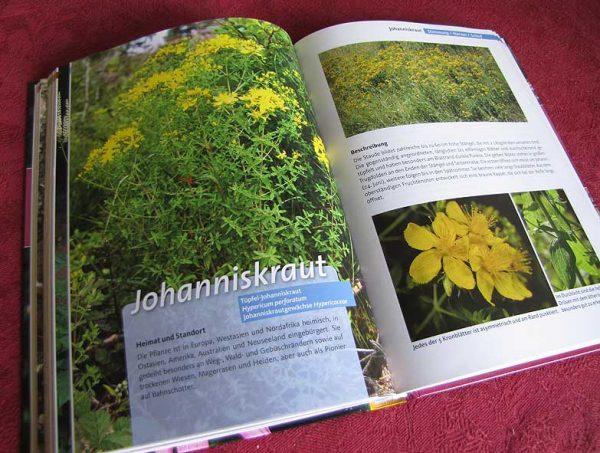 Arzneipflanzenbuch