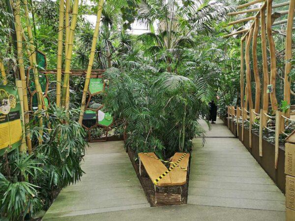 Biosphäre Potsdam Tropenwelt