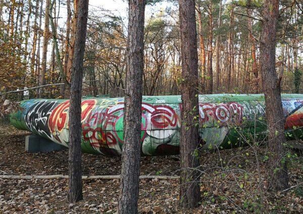 Rohr im Wald