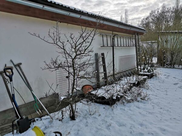 Gartenhaus-Rückseite